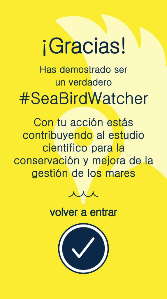 seabirdstagram_pelopanton_imedea