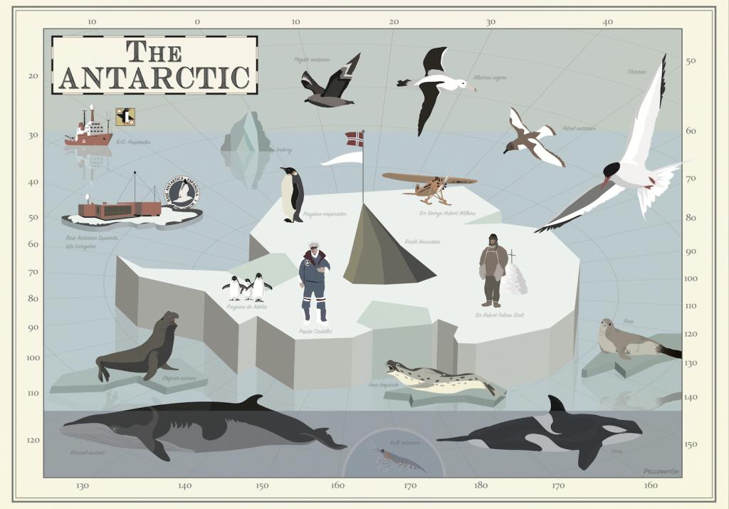 antarctic_ana_payo