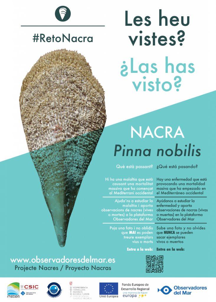 reto_nacra_poster_pelopanton