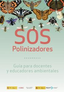sos_polinizadores_pelopanton_rjb_csic
